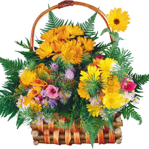 Скачать Поздравительные открытки цветы 964x768 px.